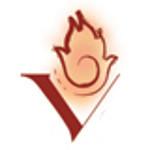 Vesuvius Group logo