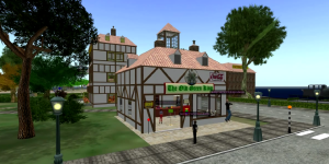 Chatterdale village for English language learners on Virtyou grid.