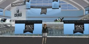 ANCC Magnet Conference 2011