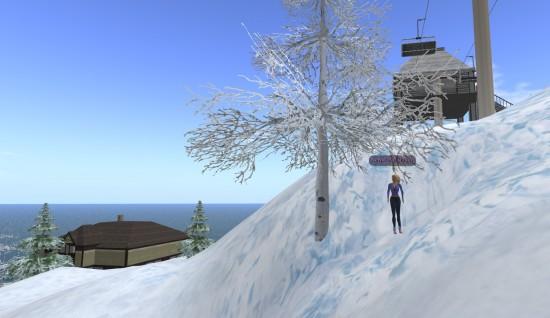 The Cora avatar on Linda Kellie's Mountain Retreat OAR.