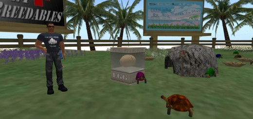 Josh Boam and his LifePet Breedables turtles.
