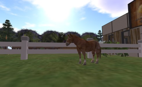 The breedable horses are still under development.