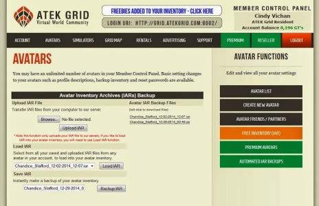 Atek Grid's online inventory backup tool. (Image courtesy Atek Grid.)