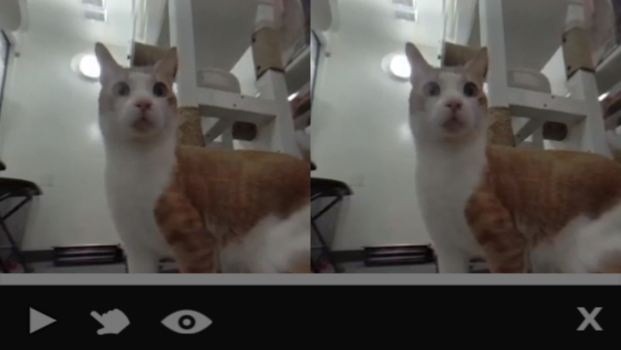 You can now watch your cat videos in 3D.