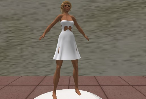 Damien Fate's mesh dress_001