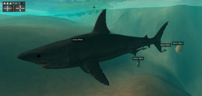 Beckhunsen's  free NPC shark bends and flexes and attacks anyone who gets near.