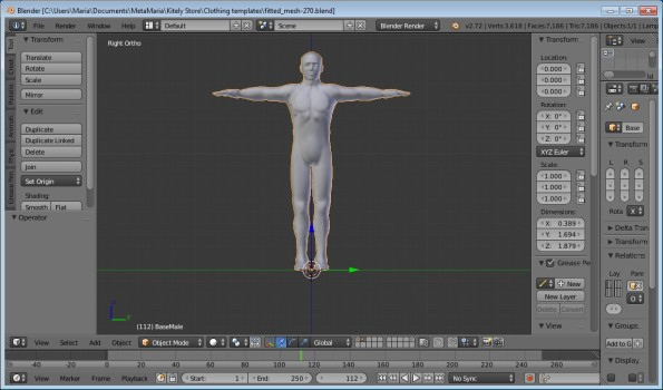 "The ""the fitted mesh 270.blend"" file contains a female model, a male model, and a set of rigging."