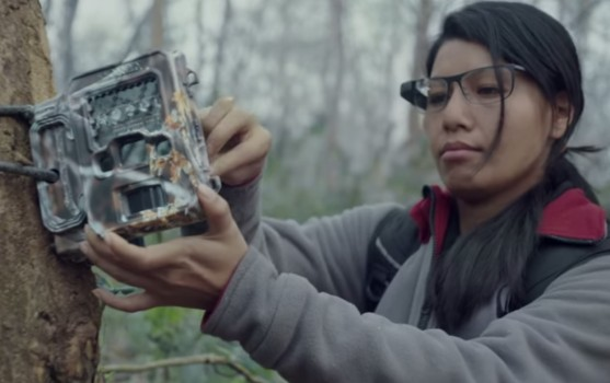 WWF's Sabita Malla uses Google Glass in the field. (Image courtesy Google.)