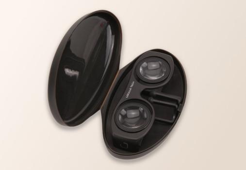 Goggles in case