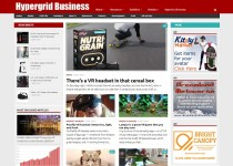 Hypergrid Business website