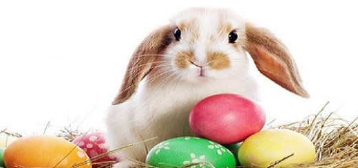 LFGrid bunny