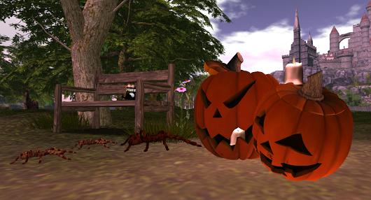 halloween_jack_pumpkins2016-10-02-18_21